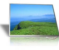 """Màn hình Laptop 15.4"""" wide"""